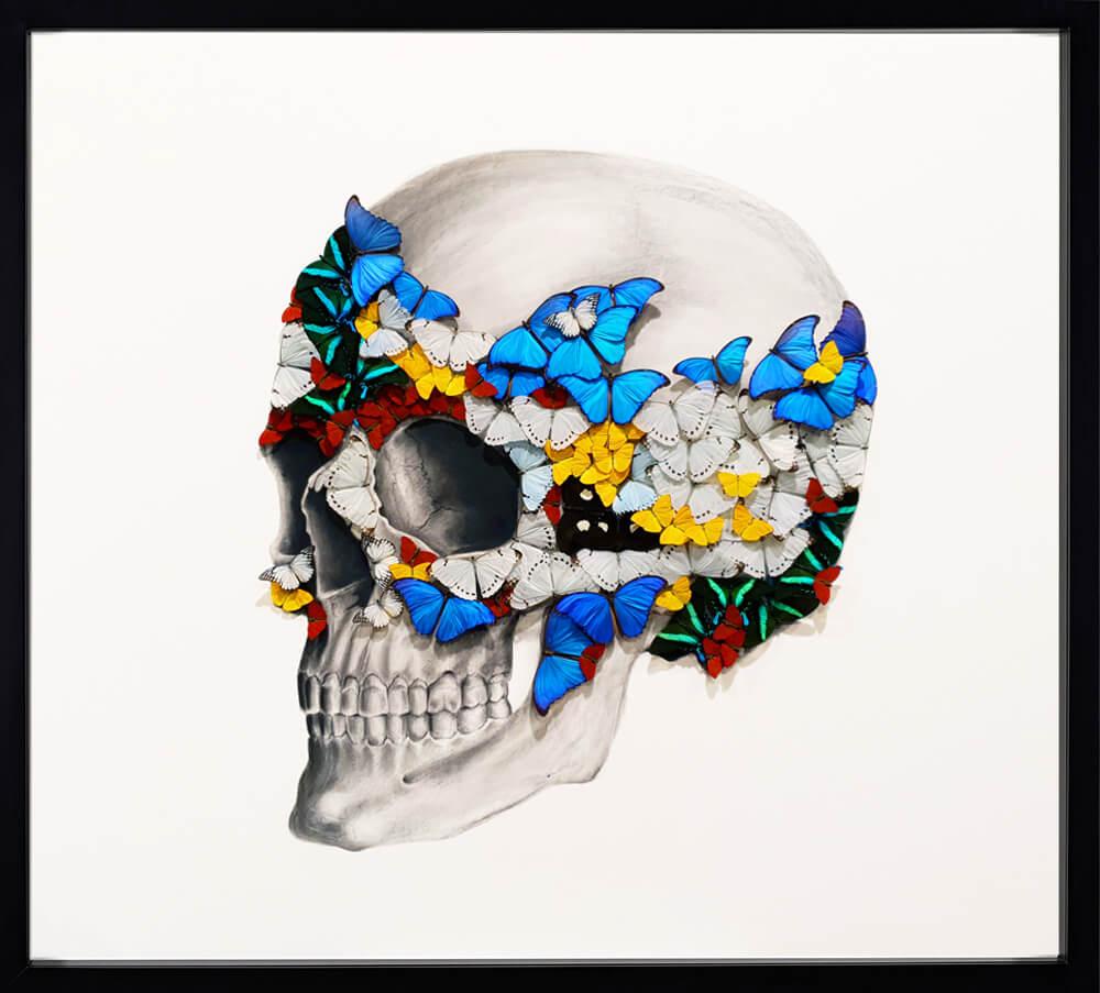 Profile Left Skull